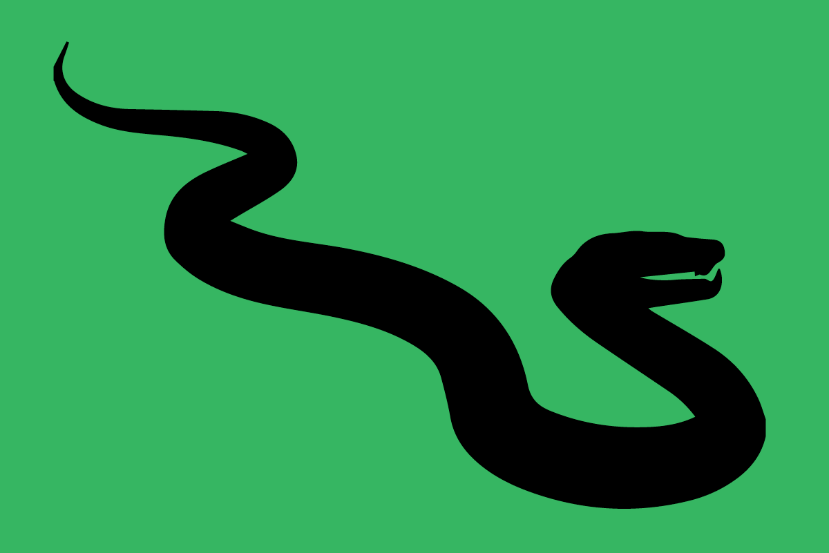 Snakes_hagerstown-pest-control